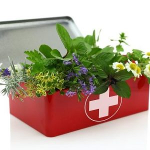 Садовая аптечка